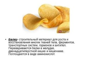Сколько времени перевариваются кукурузные палочки, чипсы