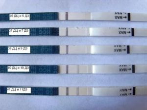 Задержка месячных 5 дней, тест отрицательный