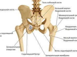 Болит гребень подвздошной кости справа, какое нужно обследование?