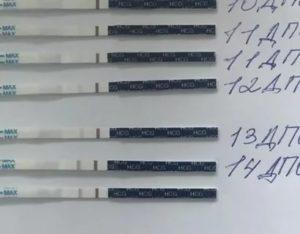 Задержка 15 дней, тест отрицательный