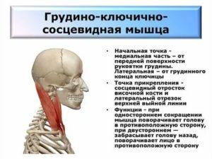 Болит грудино-ключично-сосцевидная мышца с правой стороны