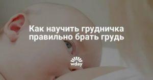 Как заставить ребенка взять грудь?