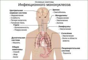 Неделю держится температура и кашель