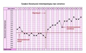 Задержка менструации и температура
