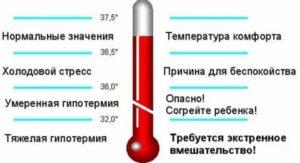 Температура 38,8, холодно, что делать?