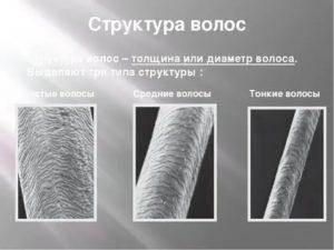 Изменилась структура волос