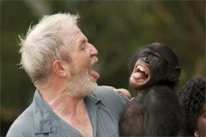 Могла ли я заразиться от обезьяны?