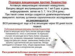 Можно ли делать прививку при температуре?