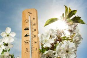 С началом весны поднимается температура