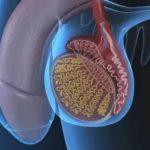 Насколько эффективен энцефабол при ЗРР?