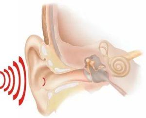 Ультразвук в ухе