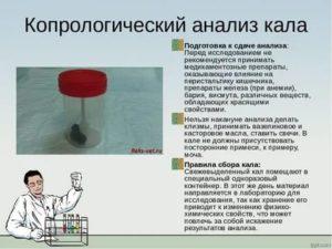 Анализ кала